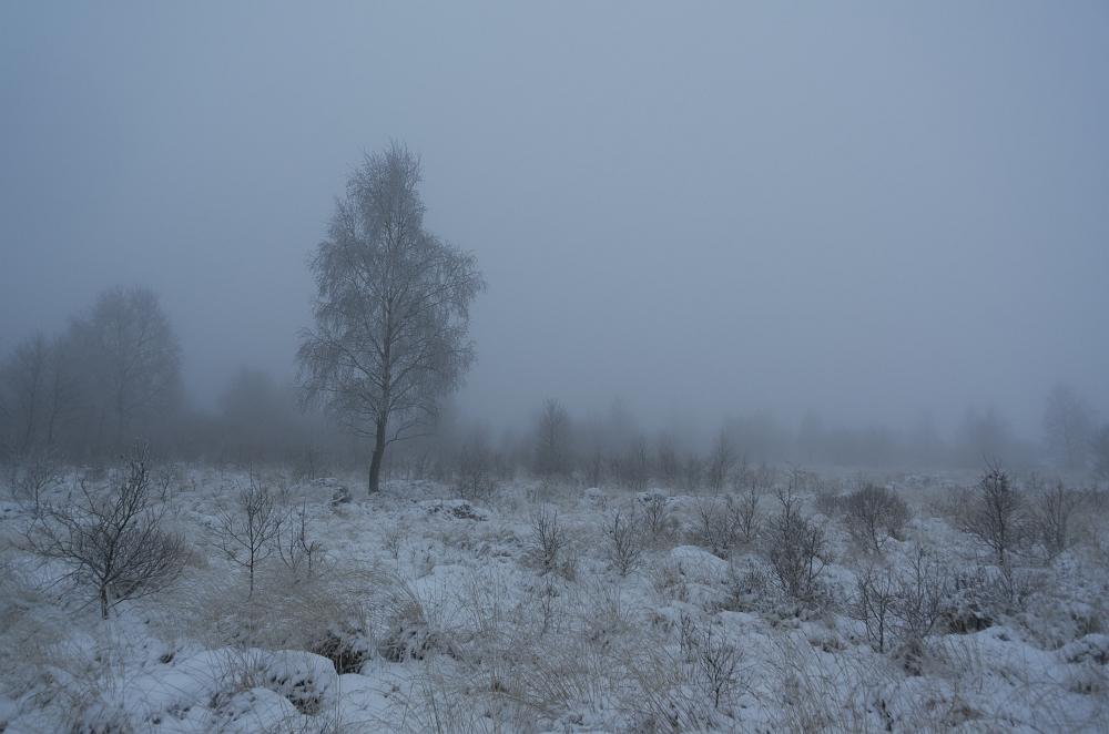 http://www.eifelmomente.de/albums/Nordeifel/Winter/2012_12_02_Abends_Fringshaus_Huppenbroich/2012_12_02_-_06_Bei_Fringshaus_DNG_bearb.jpg