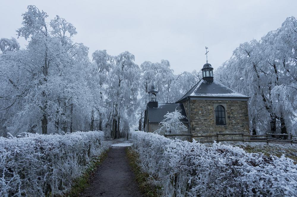 http://www.eifelmomente.de/albums/Nordeifel/Winter/2014_12_05-28_Winteranfang_Nordeifel/2014_12_05_-_30_Baraque_Michel_DNG_bearb.jpg