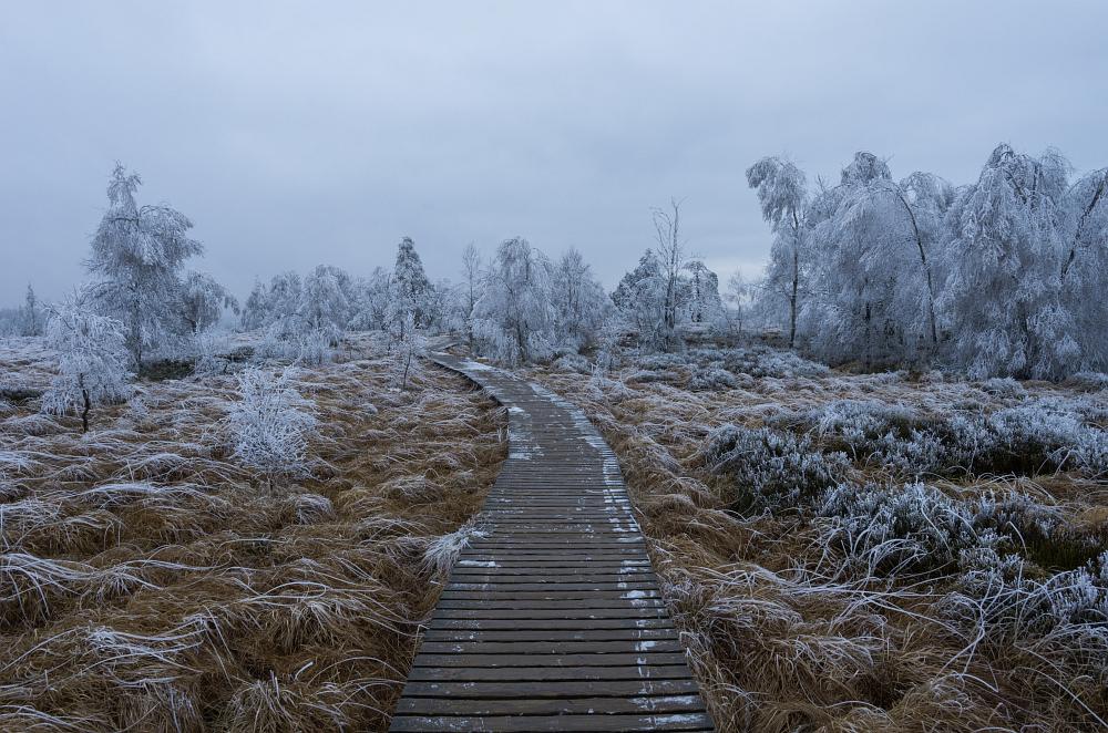 http://www.eifelmomente.de/albums/Nordeifel/Winter/2014_12_05-28_Winteranfang_Nordeifel/2014_12_05_-_41_Polleurvenn_DNG_bearb.jpg