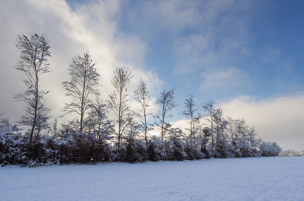 http://www.eifelmomente.de/albums/Nordeifel/Winter/2014_12_05-28_Winteranfang_Nordeifel/2014_12_14_-_006_Bei_Huppenbroich_DNG_DRI_bearb.jpg
