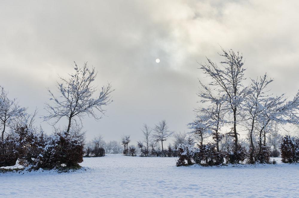 http://www.eifelmomente.de/albums/Nordeifel/Winter/2014_12_05-28_Winteranfang_Nordeifel/2014_12_14_-_014_Bei_Huppenbroich_DNG_DRI_bearb.jpg