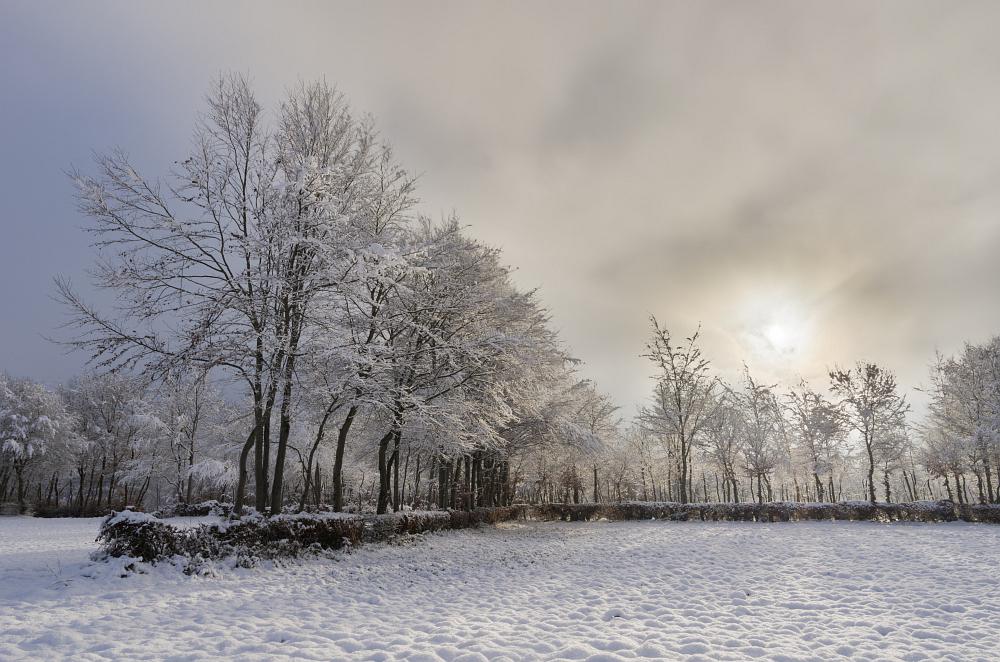 http://www.eifelmomente.de/albums/Nordeifel/Winter/2014_12_05-28_Winteranfang_Nordeifel/2014_12_14_-_047_Bei_Huppenbroich_DNG_DRI_bearb.jpg