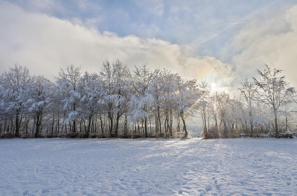 http://www.eifelmomente.de/albums/Nordeifel/Winter/2014_12_05-28_Winteranfang_Nordeifel/2014_12_14_-_055_Bei_Huppenbroich_DNG_DRI_bearb.jpg