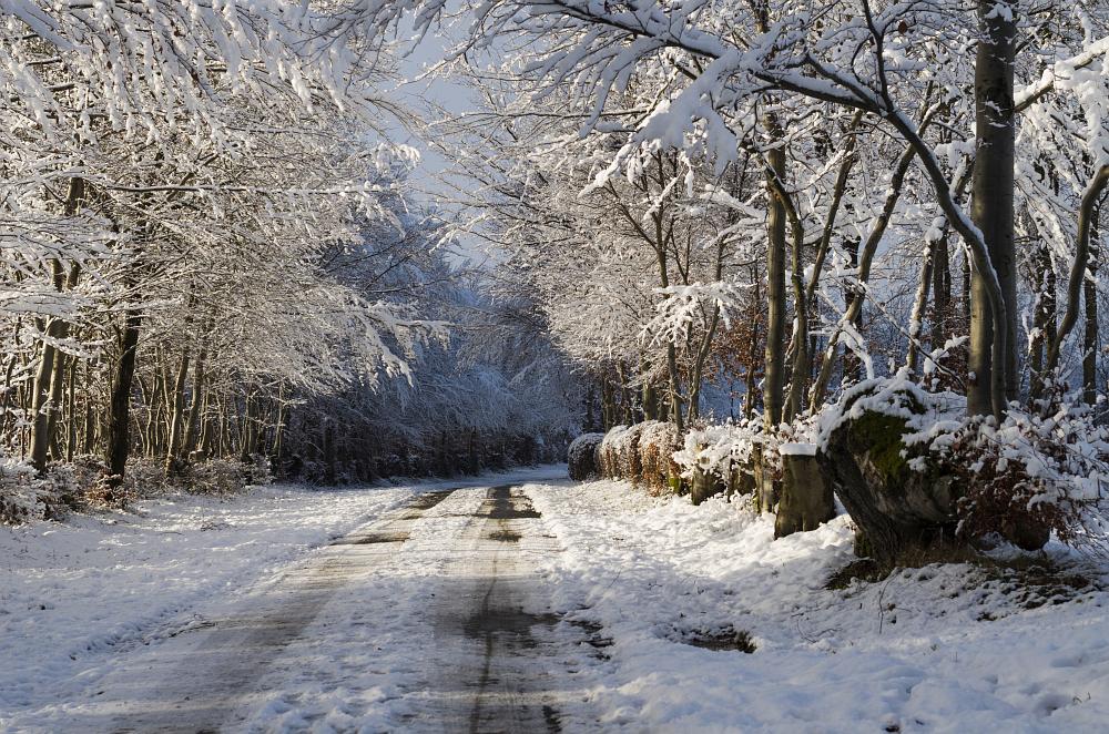 http://www.eifelmomente.de/albums/Nordeifel/Winter/2014_12_05-28_Winteranfang_Nordeifel/2014_12_14_-_069_Bei_Huppenbroich_DNG_bearb.jpg