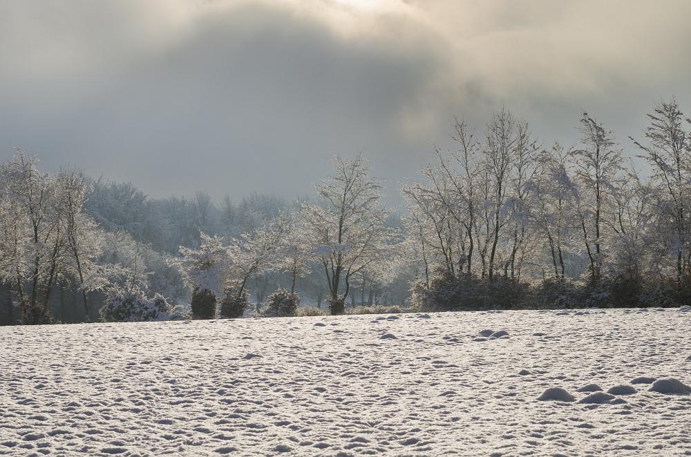 http://www.eifelmomente.de/albums/Nordeifel/Winter/2014_12_05-28_Winteranfang_Nordeifel/2014_12_14_-_071_Bei_Huppenbroich_DNG_DRI_bearb.jpg
