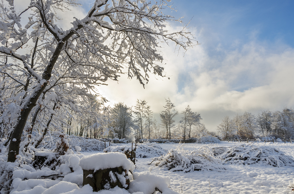 http://www.eifelmomente.de/albums/Nordeifel/Winter/2014_12_05-28_Winteranfang_Nordeifel/2014_12_14_-_109_Bei_Huppenbroich_DNG_DRI_bearb.jpg