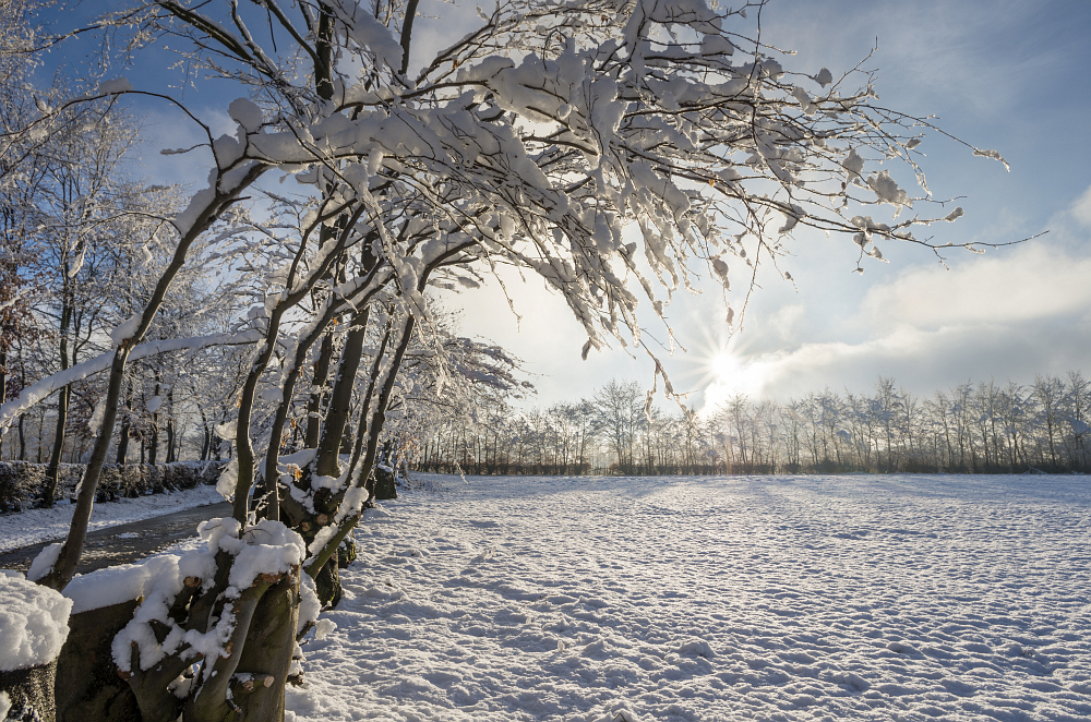 http://www.eifelmomente.de/albums/Nordeifel/Winter/2014_12_05-28_Winteranfang_Nordeifel/2014_12_14_-_133_Bei_Huppenbroich_DNG_DRI_bearb.jpg