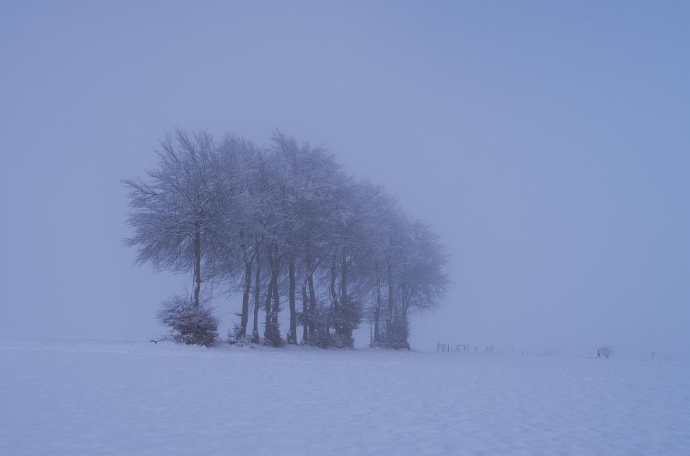 http://www.eifelmomente.de/albums/Nordeifel/Winter/2014_12_05-28_Winteranfang_Nordeifel/2014_12_14_-_205_Steling_DNG_bearb_ausschn.jpg