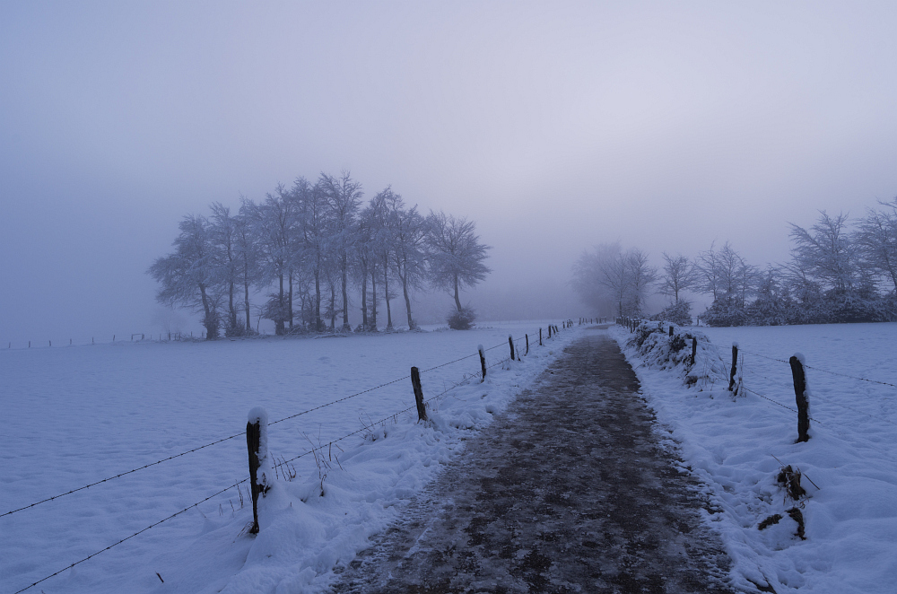 http://www.eifelmomente.de/albums/Nordeifel/Winter/2014_12_05-28_Winteranfang_Nordeifel/2014_12_14_-_208_Steling_DNG_bearb.jpg