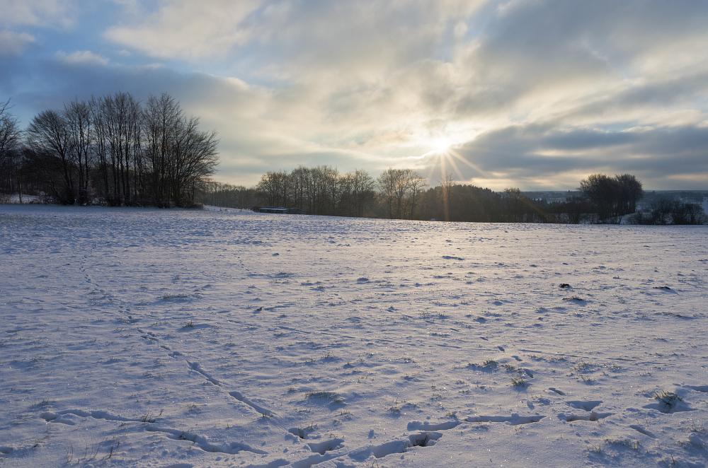 http://www.eifelmomente.de/albums/Nordeifel/Winter/2015-16_Winter/2016_02_16_-_025_Bei_Imgenbroich_DNG_DRI_bearb.jpg