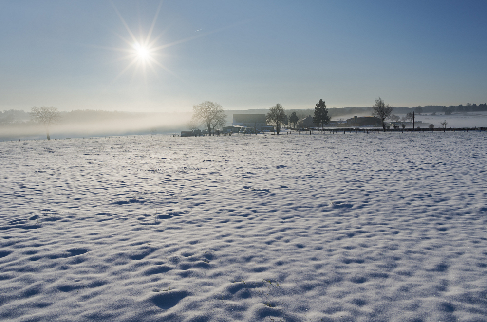 http://www.eifelmomente.de/albums/Nordeifel/Winter/2015-16_Winter/2016_02_16_-_066_Sief_DNG_DRI_bearb.jpg