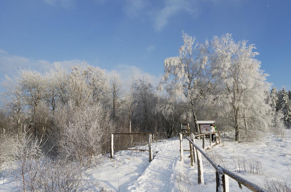 http://www.eifelmomente.de/albums/Nordeifel/Winter/2016_01_17-21_Winter_Venn/2016_01_17_-_009_Brackvenn_DNG_bearb.jpg