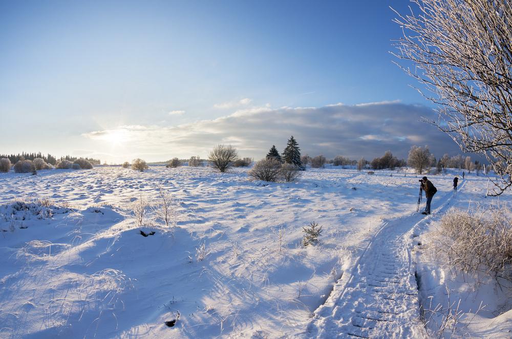 http://www.eifelmomente.de/albums/Nordeifel/Winter/2016_01_17-21_Winter_Venn/2016_01_17_-_036_Brackvenn_DNG_DRI_bearb.jpg