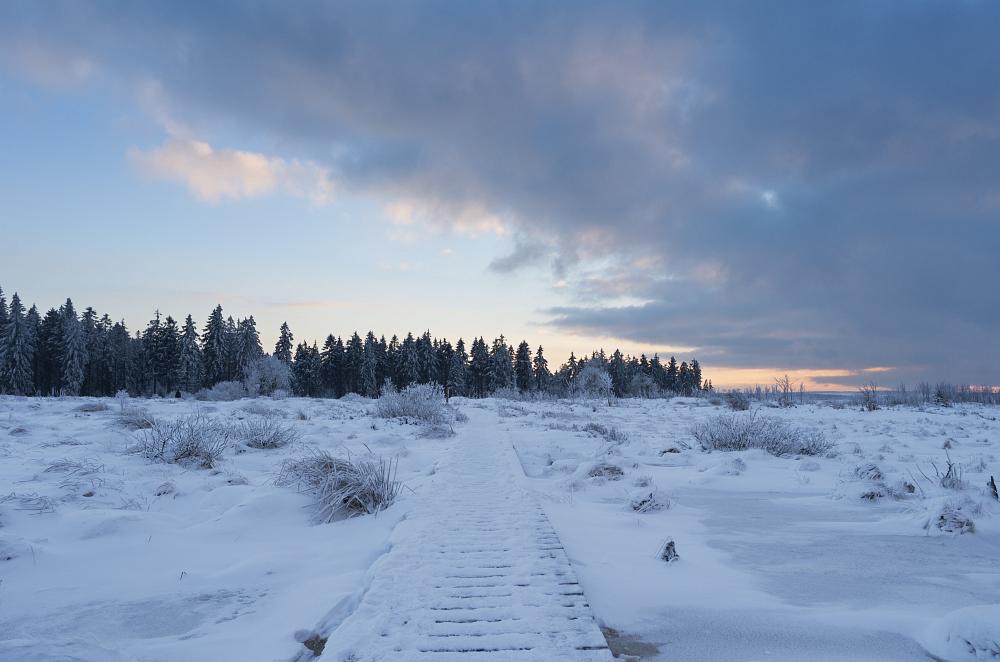 http://www.eifelmomente.de/albums/Nordeifel/Winter/2016_01_17-21_Winter_Venn/2016_01_17_-_085_Brackvenn_DNG_DRI_bearb.jpg