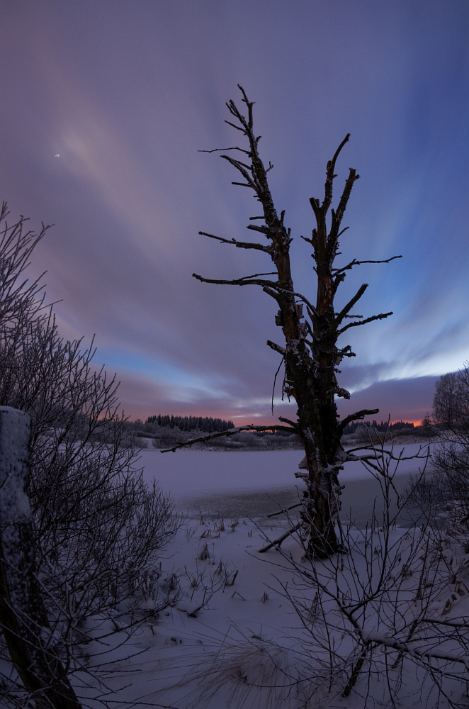 http://www.eifelmomente.de/albums/Nordeifel/Winter/2016_01_17-21_Winter_Venn/2016_01_17_-_113_Brackvenn_DNG_bearb.jpg