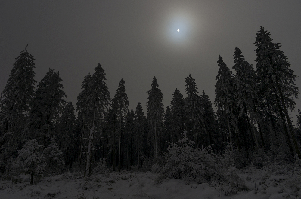 http://www.eifelmomente.de/albums/Nordeifel/Winter/2016_01_17-21_Winter_Venn/2016_01_21_-_094_Poleurvenn_DNG_bearb.jpg
