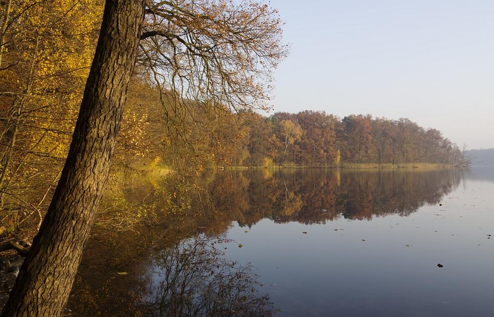 http://www.eifelmomente.de/albums/Urlaub/2011_11_05-09_Berlin/2011_11_06_-_059_Sacrower_See_DNG_bearb_ausschn.jpg