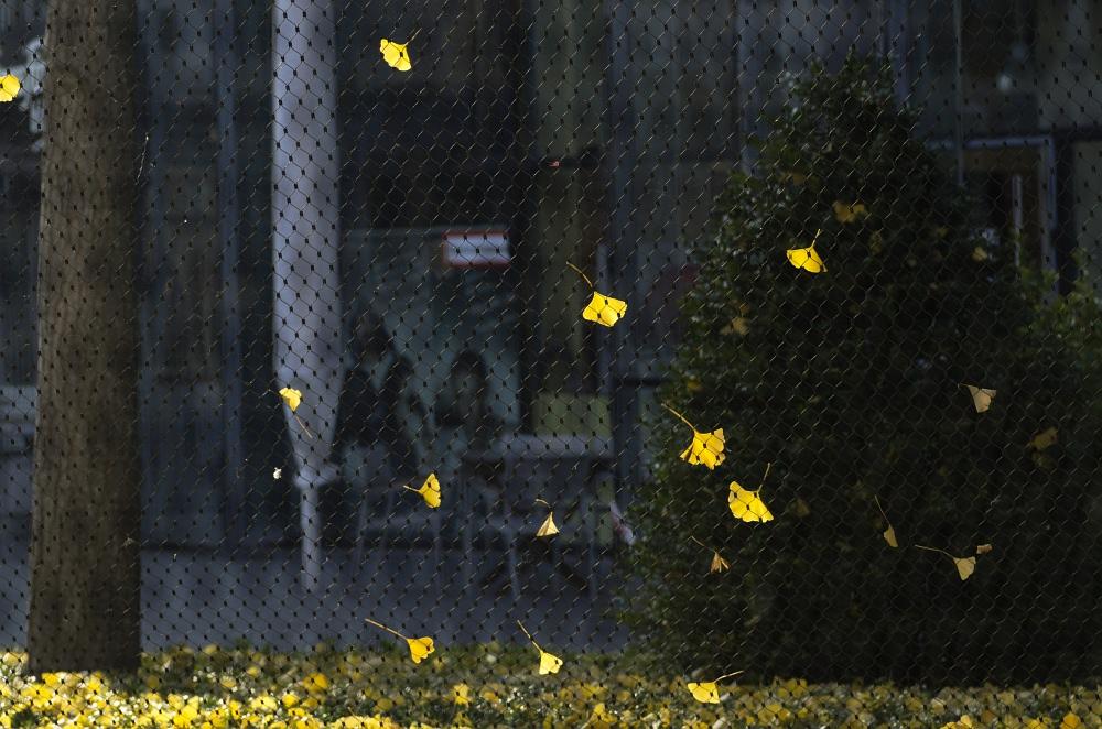 http://www.eifelmomente.de/albums/Urlaub/2011_11_05-09_Berlin/2011_11_07_-_087_Berlin_DNG_bearb.jpg