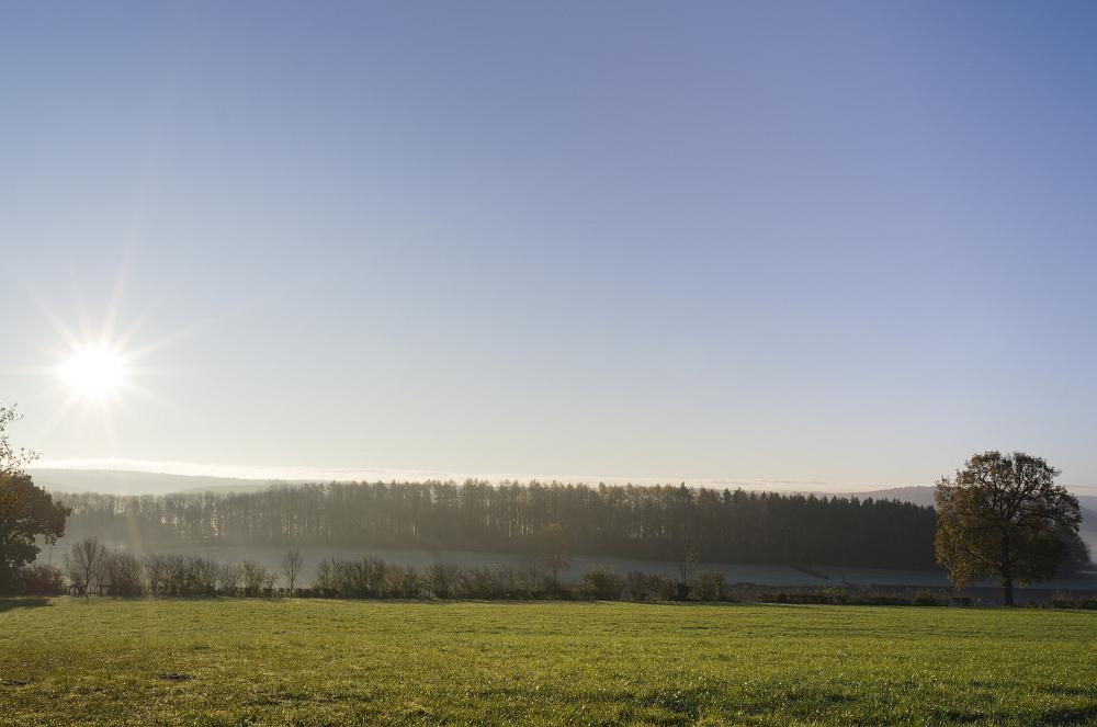 https://www.eifelmomente.de/albums/Nordeifel/Herbst/2011_11_11-29_Nordeifel/2011_11_11_-_021_Bei_Baelen_DNG_DRI_bearb.jpg