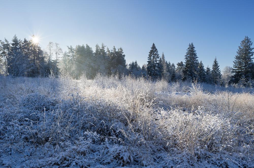 https://www.eifelmomente.de/albums/Nordeifel/Winter/2020-21_Winter/2020_12_09_-_167_Hoscheit_DNG_DRI_bearb.jpg