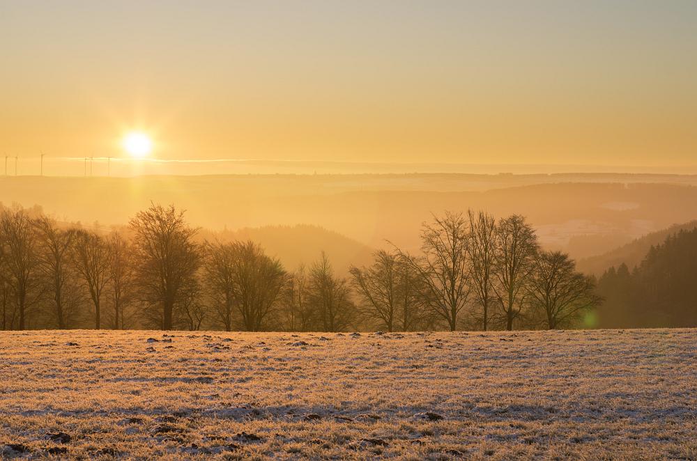 https://www.eifelmomente.de/albums/Nordeifel/Winter/2020-21_Winter/2020_12_10_-_04_Bei_Kesternich_DNG_DRI_bearb.jpg