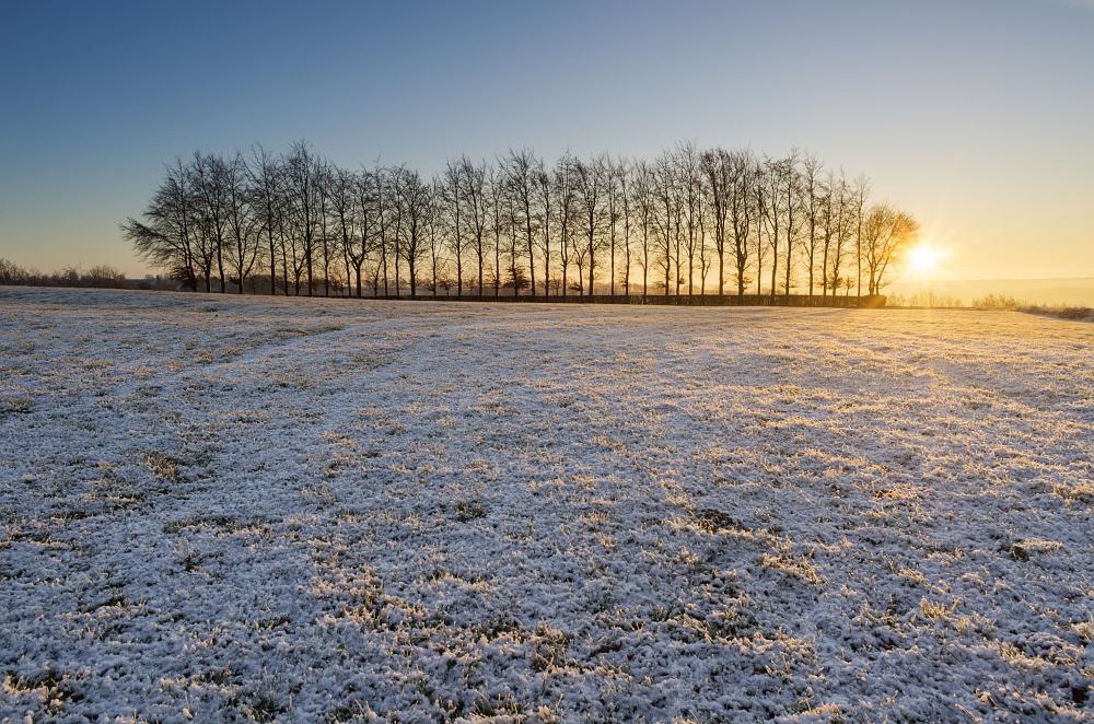 https://www.eifelmomente.de/albums/Nordeifel/Winter/2020-21_Winter/2020_12_10_-_19_Bei_Kesternich_DNG_DRI_bearb.jpg