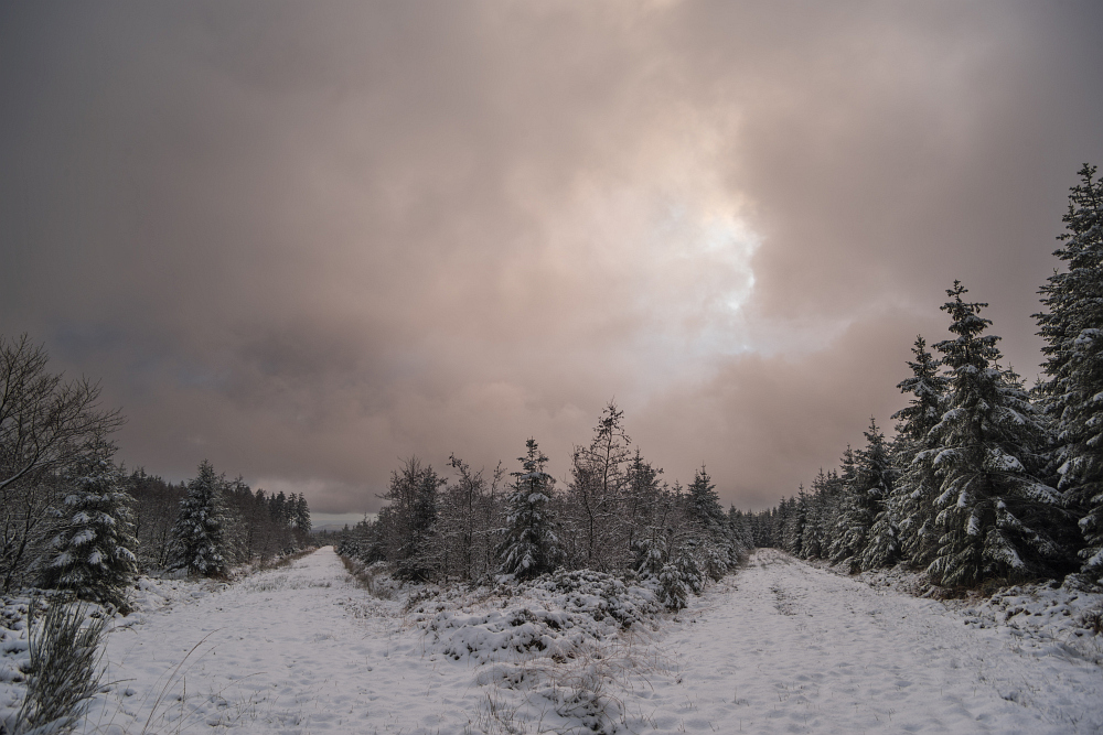https://www.eifelmomente.de/albums/Nordeifel/Winter/2020-21_Winter/2020_12_25_-_15_Bei_Hockai_DNG_DRI_bearb.jpg