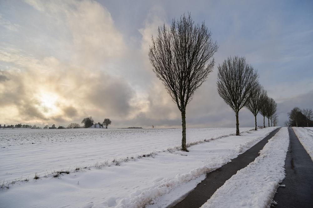https://www.eifelmomente.de/albums/Nordeifel/Winter/2020-21_Winter/2020_12_29_-_086_Bei_Bleialf_DNG_DRI_bearb.jpg