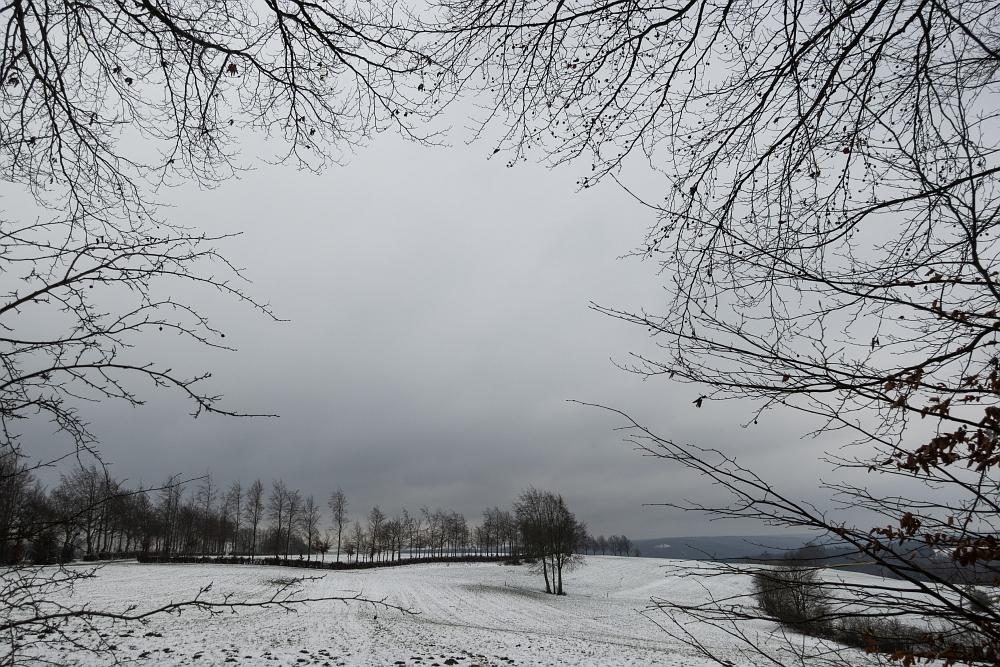 https://www.eifelmomente.de/albums/Nordeifel/Winter/2020-21_Winter/2021_01_03_-_002_Bei_Kesternich_ARW_bearb.jpg