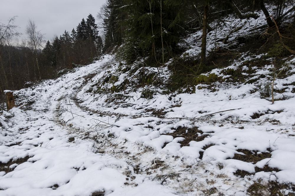 https://www.eifelmomente.de/albums/Nordeifel/Winter/2020-21_Winter/2021_01_03_-_043_Tiefenbachtal_ARW_bearb.jpg