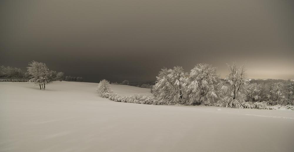 https://www.eifelmomente.de/albums/Nordeifel/Winter/2020-21_Winter/2021_01_08_-_119_Kesternich_DNG_bearb_ausschn.jpg