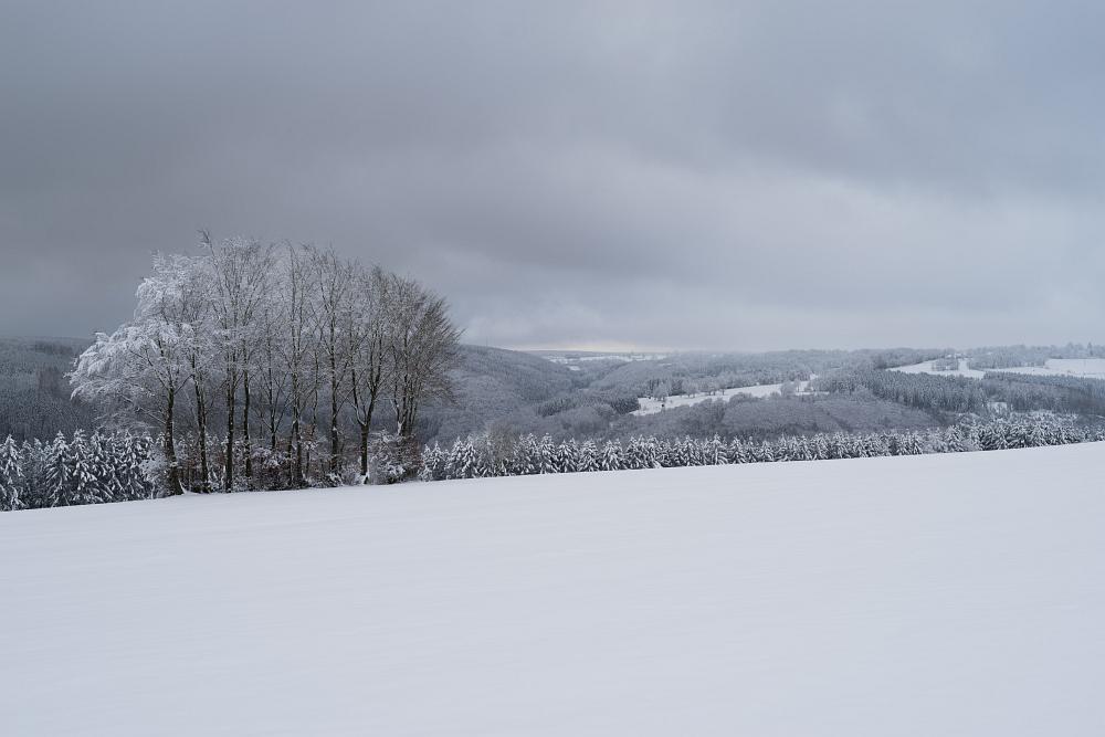 https://www.eifelmomente.de/albums/Nordeifel/Winter/2020-21_Winter/2021_01_09_-_02_Bei_Eicherscheid_DNG_bearb.jpg