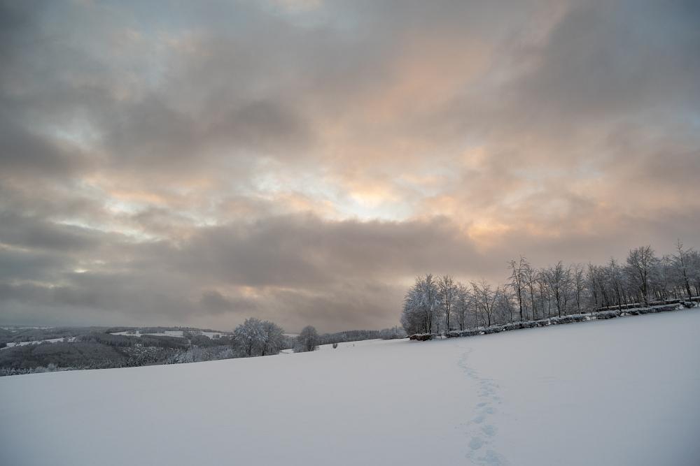 https://www.eifelmomente.de/albums/Nordeifel/Winter/2020-21_Winter/2021_01_09_-_47_Bei_Eicherscheid_DNG_DRI_bearb.jpg