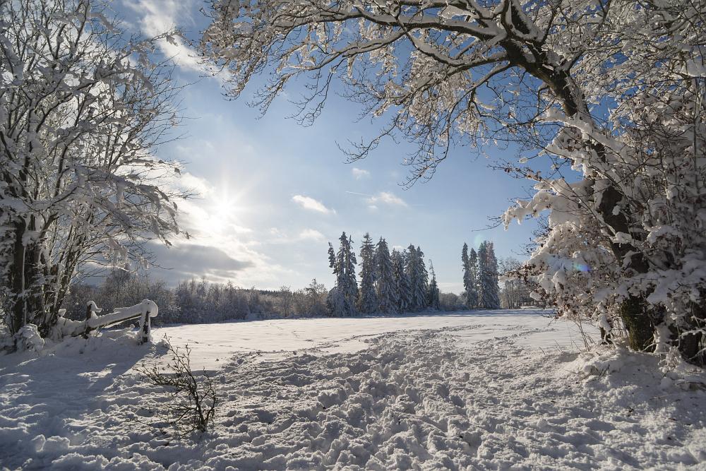 https://www.eifelmomente.de/albums/Nordeifel/Winter/2020-21_Winter/2021_01_10_-_007_Simmerath_Kranzbruch_DNG_DRI_bearb.jpg
