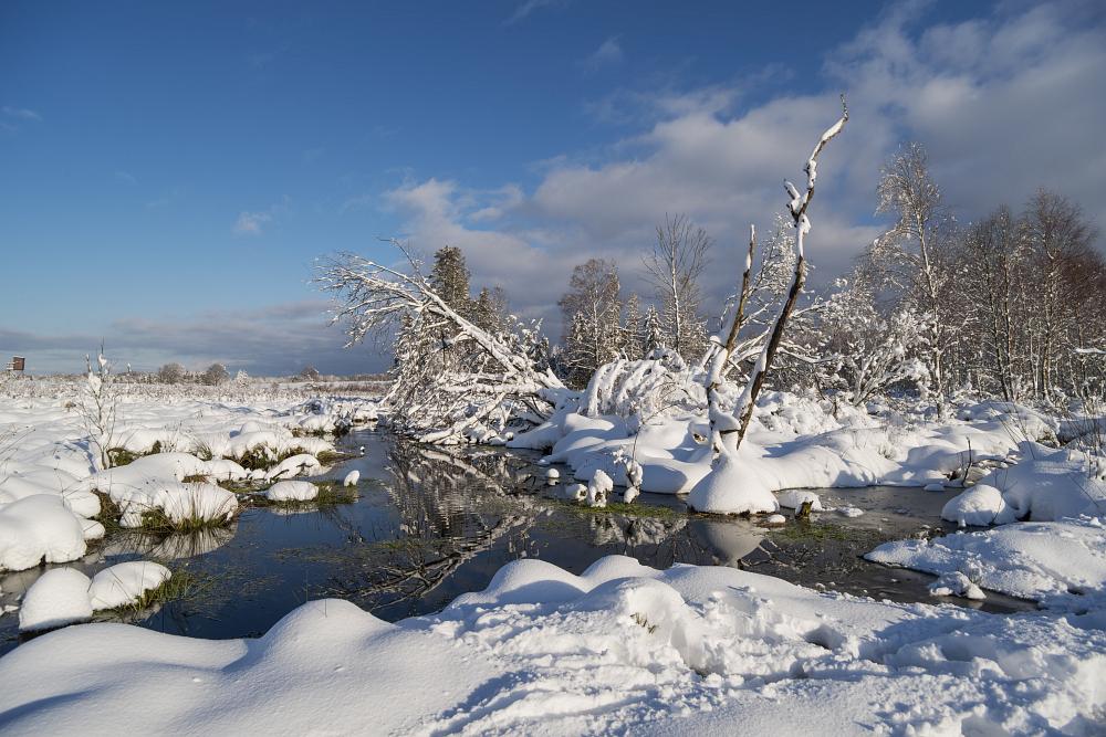 https://www.eifelmomente.de/albums/Nordeifel/Winter/2020-21_Winter/2021_01_10_-_014_Simmerath_Kranzbruch_DNG_bearb.jpg
