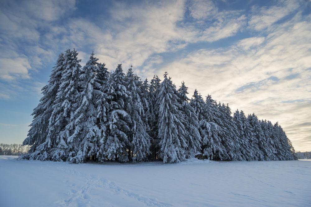 https://www.eifelmomente.de/albums/Nordeifel/Winter/2020-21_Winter/2021_01_10_-_148_Simmerath_Kranzbruch_DNG_DRI_bearb.jpg