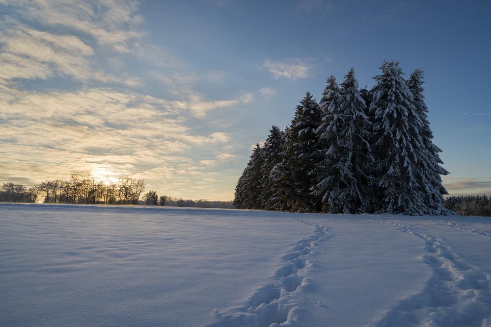 https://www.eifelmomente.de/albums/Nordeifel/Winter/2020-21_Winter/2021_01_10_-_164_Simmerath_Kranzbruch_DNG_DRI_bearb.jpg