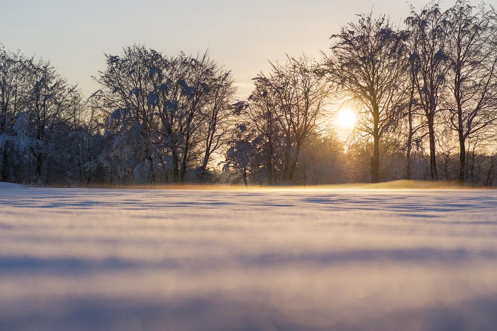 https://www.eifelmomente.de/albums/Nordeifel/Winter/2020-21_Winter/2021_01_10_-_181_Simmerath_Kranzbruch_DNG_DRI_bearb.jpg