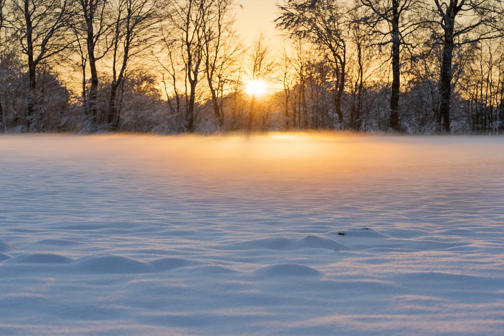 https://www.eifelmomente.de/albums/Nordeifel/Winter/2020-21_Winter/2021_01_10_-_205_Simmerath_Kranzbruch_DNG_DRI_bearb.jpg