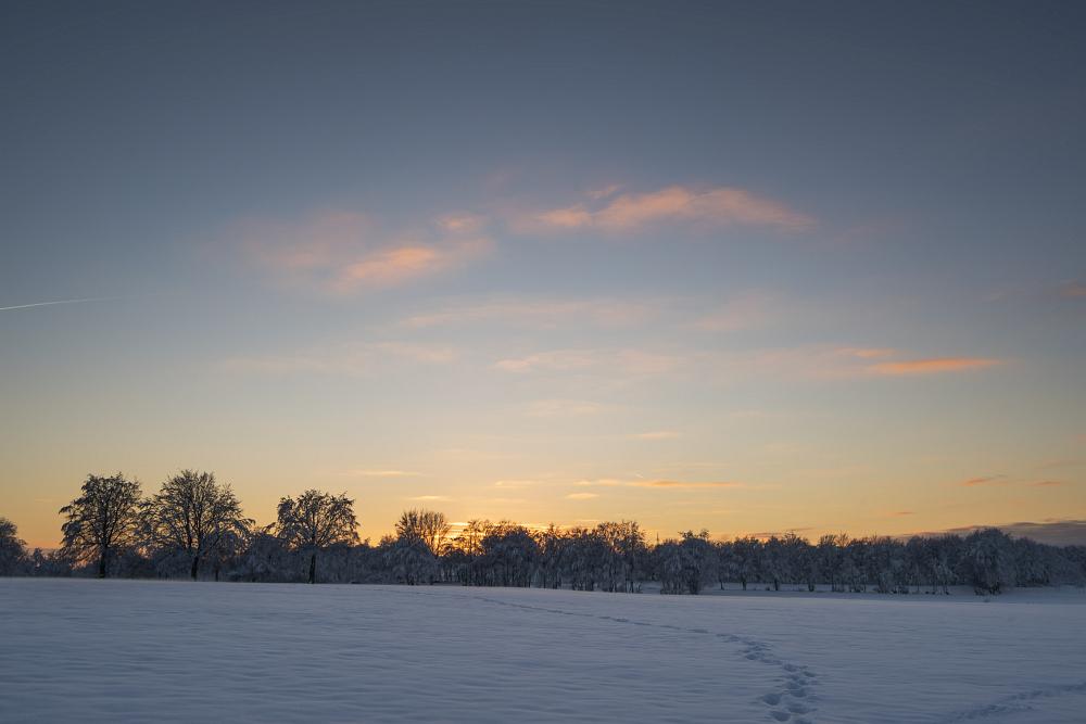 https://www.eifelmomente.de/albums/Nordeifel/Winter/2020-21_Winter/2021_01_10_-_228_Simmerath_Kranzbruch_DNG_DRI_bearb.jpg
