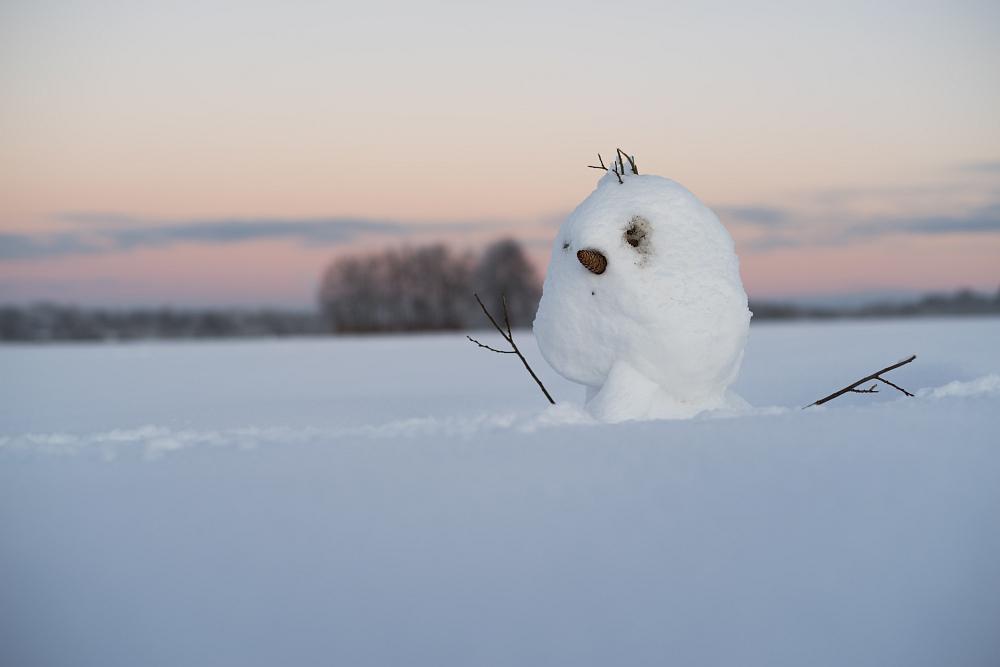 https://www.eifelmomente.de/albums/Nordeifel/Winter/2020-21_Winter/2021_01_10_-_241_Simmerath_Kranzbruch_DNG_bearb.jpg