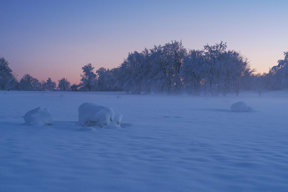 https://www.eifelmomente.de/albums/Nordeifel/Winter/2020-21_Winter/2021_01_10_-_268_Simmerath_Kranzbruch_DNG_DRI_bearb.jpg