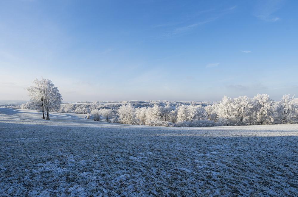 https://www.eifelmomente.de/albums/Nordeifel/Winter/2020-21_Winter/2021_02_10_-_14_Bei_Kesternich_DNG_bearb.jpg