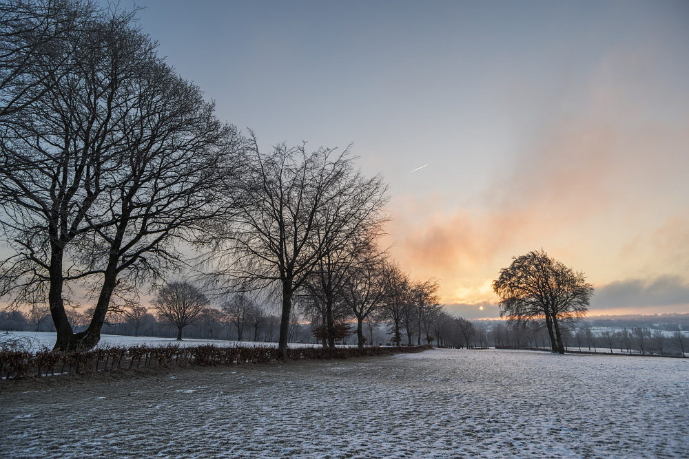https://www.eifelmomente.de/albums/Nordeifel/Winter/2020-21_Winter/2021_02_12_-_068_Bei_Lammersdorf_DNG_DRI_bearb.jpg