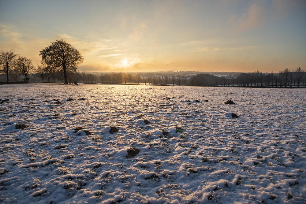 https://www.eifelmomente.de/albums/Nordeifel/Winter/2020-21_Winter/2021_02_12_-_116_Bei_Lammersdorf_DNG_DRI_bearb.jpg