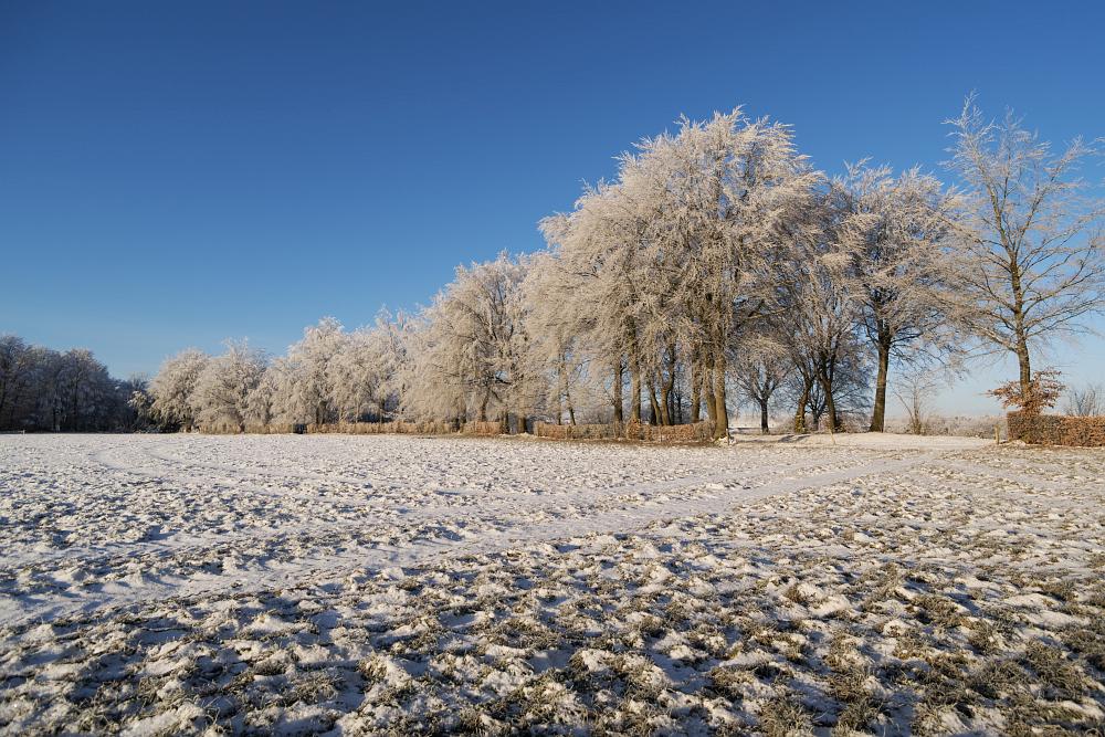 https://www.eifelmomente.de/albums/Nordeifel/Winter/2020-21_Winter/2021_02_12_-_181_Bei_Lammersdorf_DNG_bearb_ausschn.jpg