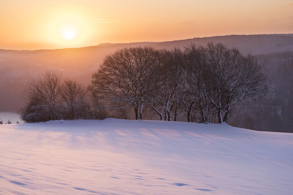 https://www.eifelmomente.de/albums/Nordeifel/Winter/2020_02_27-28_Wintergastspiel/2020_02_28_-_056_Bei_Steckenborn_DNG_DRI_bearb.jpg