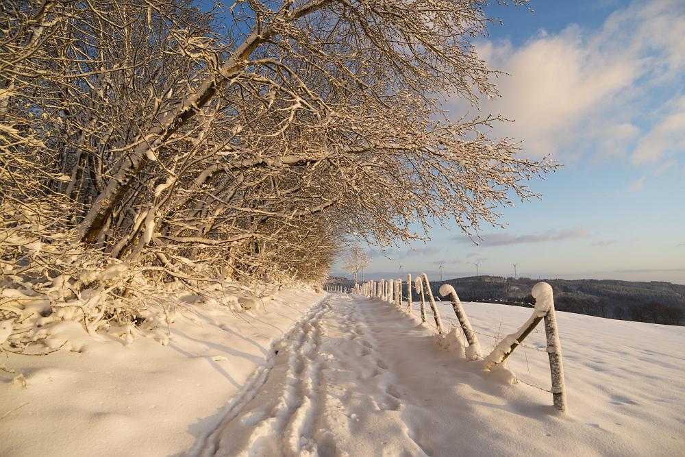 https://www.eifelmomente.de/albums/Nordeifel/Winter/2020_02_27-28_Wintergastspiel/2020_02_28_-_102_Bei_Steckenborn_DNG_bearb.jpg