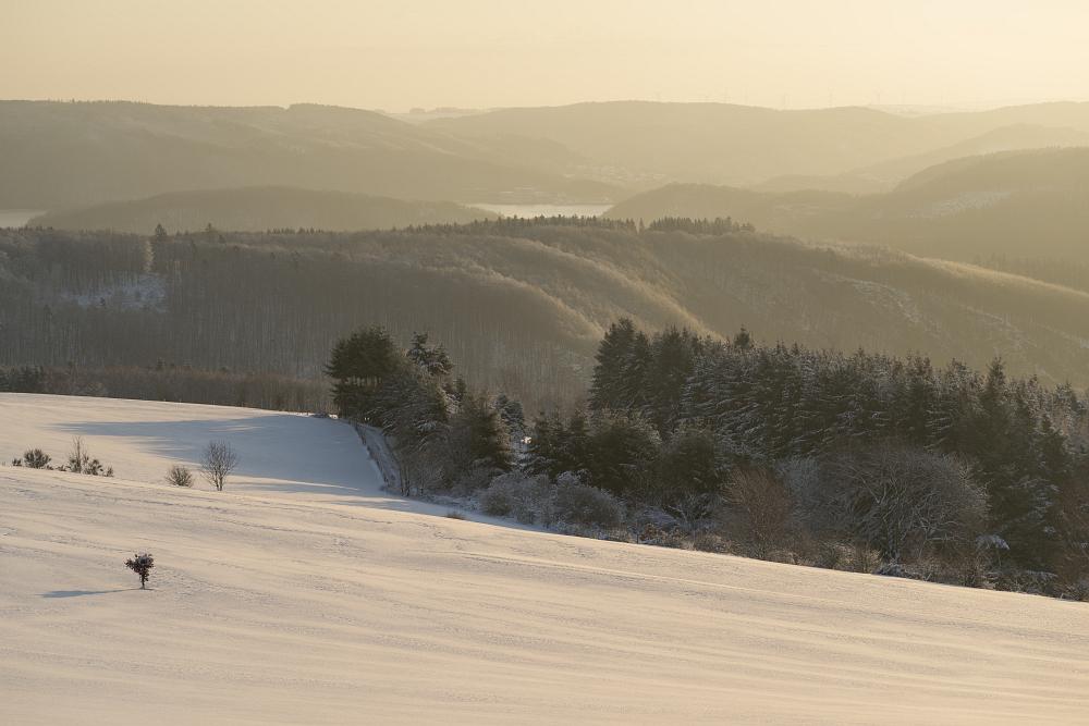 https://www.eifelmomente.de/albums/Nordeifel/Winter/2020_02_27-28_Wintergastspiel/2020_02_28_-_126_Bei_Steckenborn_DNG_bearb.jpg