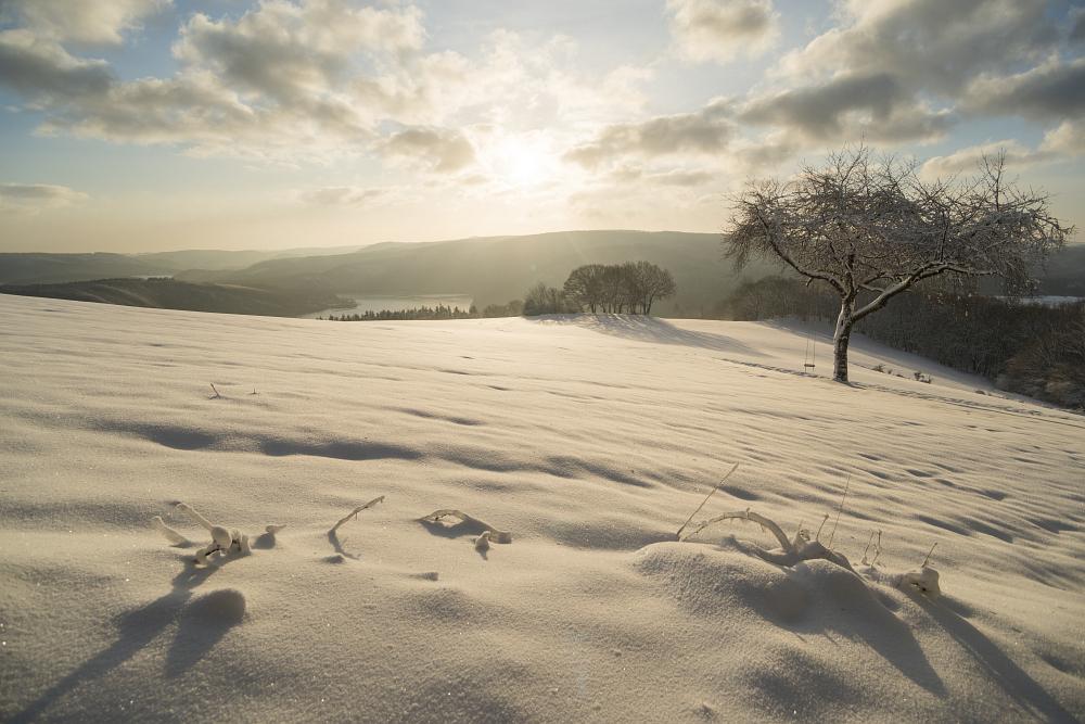 https://www.eifelmomente.de/albums/Nordeifel/Winter/2020_02_27-28_Wintergastspiel/2020_02_28_-_159_Bei_Steckenborn_DNG_DRI_bearb.jpg